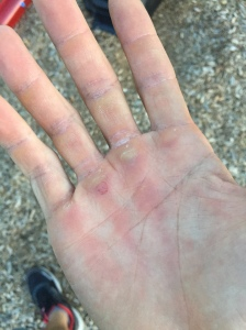 Substituted the last set of muscle ups with monkey bar pull-ups. Check out the video. I love these 🐵bars!